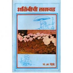 Alimbichi lagwad ( mushroom)